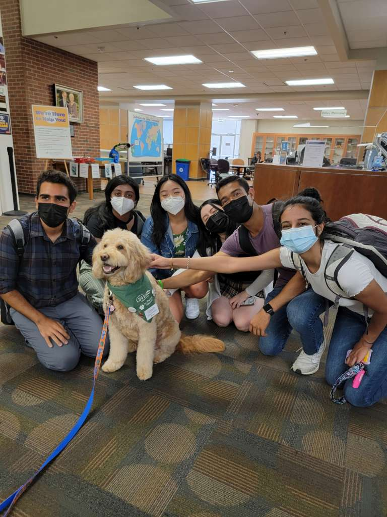 MHP Students Meet Beau the Therapy Dog